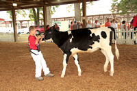 Du Quoin State fair photos