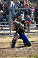 Steeleville high school softball